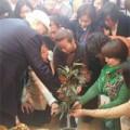 地球経営学科~カクレミノの木と触れあう授業