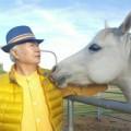 馬を通して生命と通じる