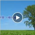 「みどりの日」 呼吸瞑想~樹木編~