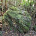 Meditaion Rock